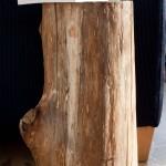 Bijzettafel gemaakt van een originele boomstam. Hierdoor heeft het een natuurlijke uitstraling.